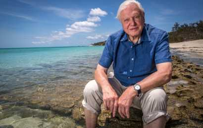 "Al via su Focus ""Attenborough e la grande Barriera Corallina"""