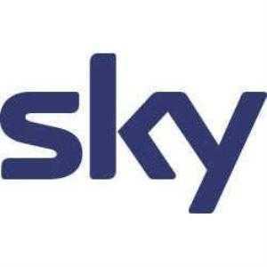 Guerra delle tv, ecco i segreti I record di Sky. Ma Mediaset e Rai... | Digitale terrestre: Dtti.it