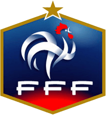 Diritti TV: l'equipe francese si affida all'UEFA | Digitale terrestre: Dtti.it