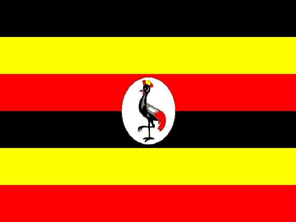 Uganda: passaggio al digitale terrestre entro 2012 | Digitale terrestre: Dtti.it