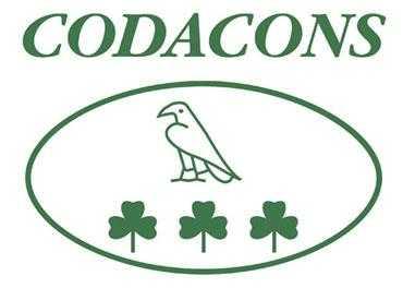 Rai: Codacons lancia sottoscrizione pubblica per acquisto | Digitale terrestre: Dtti.it