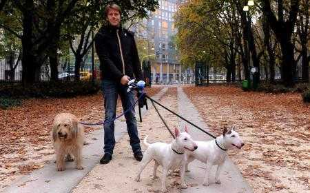 Su Cielo Emanuele Filiberto toelettatore di cani e dog sitter | Digitale terrestre: Dtti.it