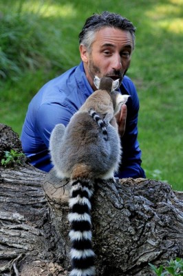Missione Natura (La7) adotta il cucciolo di lemure catta del Bioparco