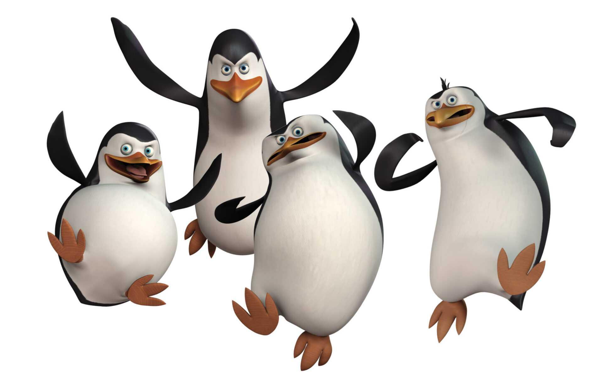 Da domani su Boing arrivano i pinguini di Madagascar | Digitale terrestre: Dtti.it