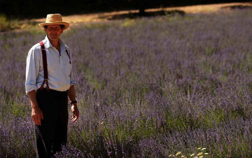 """Su DoveTv arriva """"Grandi giardini di Francia"""" con Monty Don   Digitale terrestre: Dtti.it"""