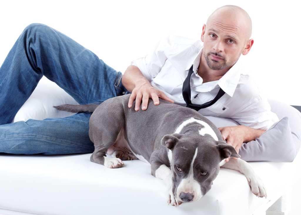 DeaKids: Missione cuccioli, al via la quinta stagione | Digitale terrestre: Dtti.it