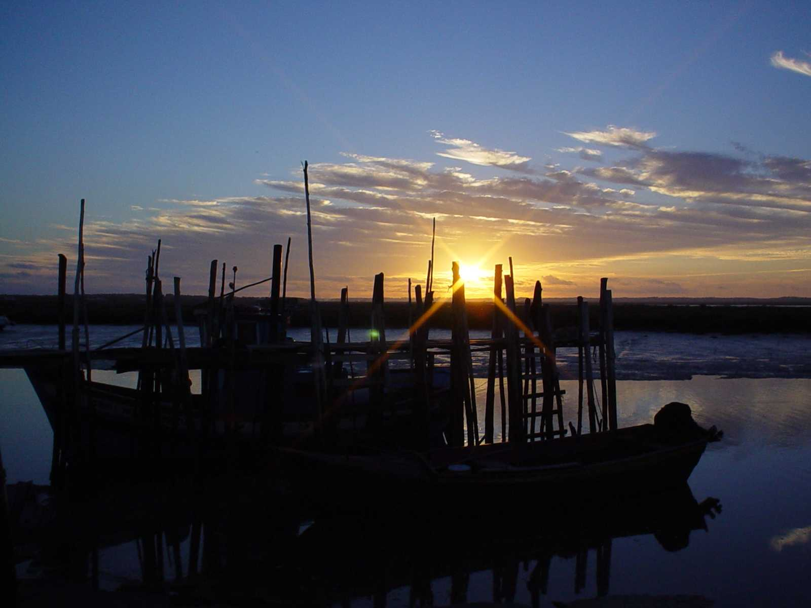 "Pesca: ""Le cronache di Walker Cay"", | Digitale terrestre: Dtti.it"