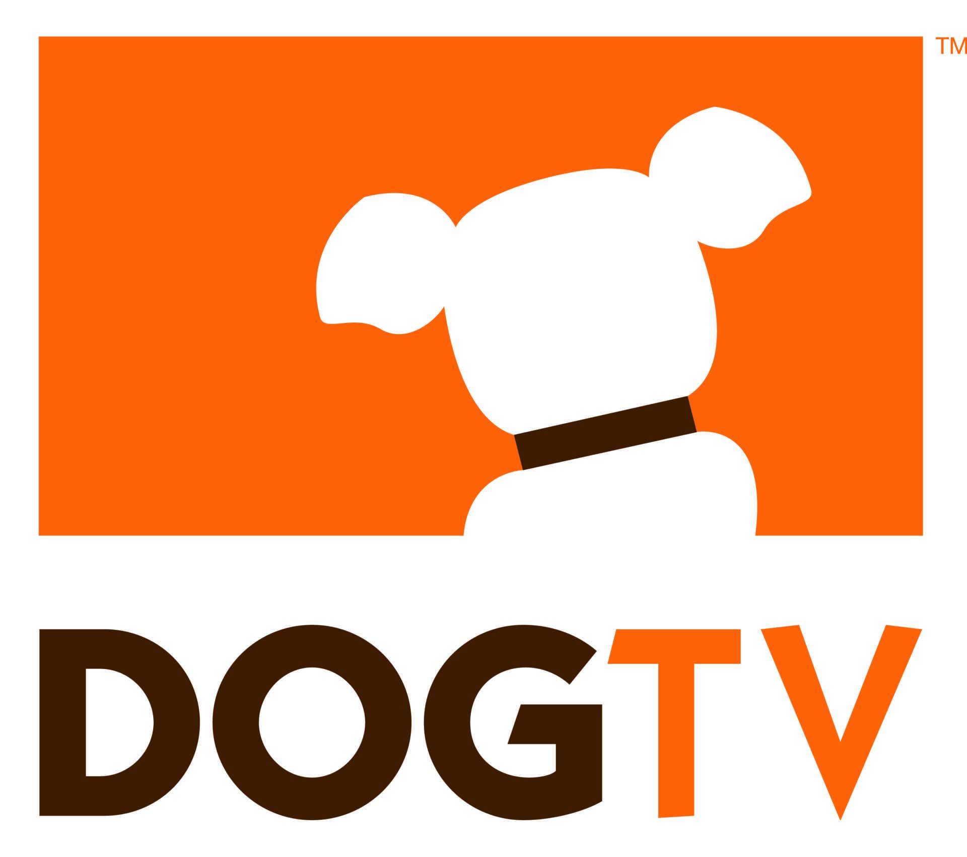 Arriva DogTv, il canale per cani | Digitale terrestre: Dtti.it