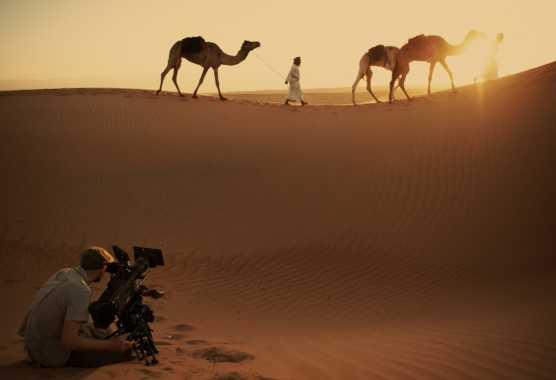 """""""Il Cuore selvaggio dell'Arabia"""" su BBC Knowledge, da giovedì 22 agosto   Digitale terrestre: Dtti.it"""