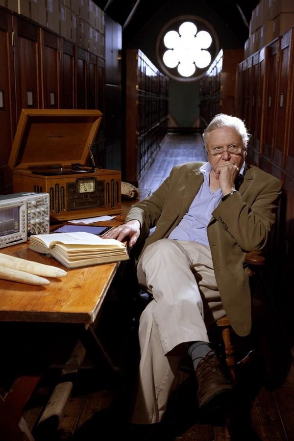 David Attenborough e le curiosità della natura su BBC Knowledge