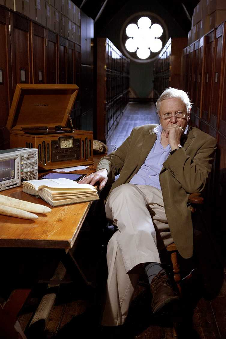 David Attenborough e le curiosità della natura su BBC Knowledge   Digitale terrestre: Dtti.it