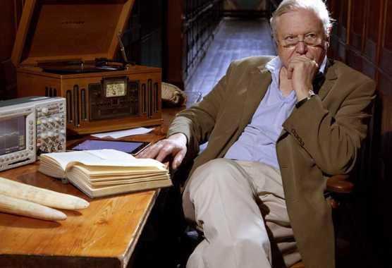 David Attenborough e le curiosità della natura su BBC Knowledge | Digitale terrestre: Dtti.it