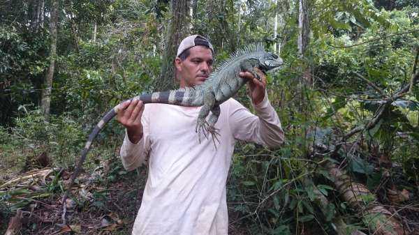 """DMAX: dal 25 novembre arriva """"Wild Frank: Amazzonia"""""""
