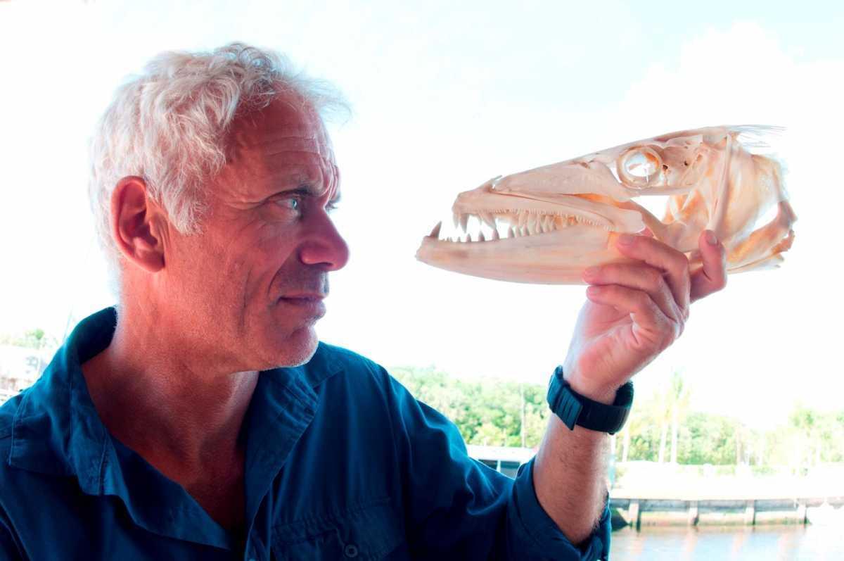 """Dal 13 dicembre Jeremy Wade torna a cacciare i pesci più strani e pericolosi nella terza stagione di """"River Monsters"""""""