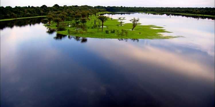 """Su National geographic Wild lo speciale """"Amazzonia selvaggia"""""""