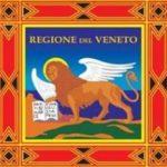 Logo del gruppo di DTT in Veneto